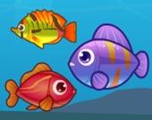 Большая рыба ест маленькую 2