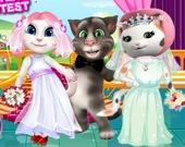 Белые кошки: конкурс невест