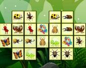 Соедини насекомых