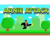 Атака Арни 1