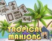 Тропический маджонг