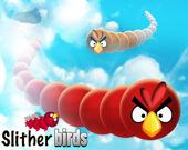 Скользящие Птицы