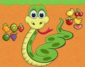 Змеиный Плод