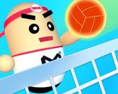 3D Удивительный волейбол