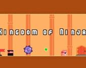 Королевство ниндзя
