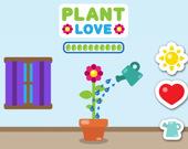 Люби Растение