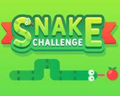 Змейка: Вызов