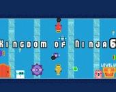 Королевство ниндзя 6