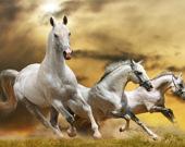 Пятнашки Бегущие лошади
