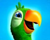 Говорящая птичка Пьер