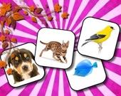 Запоминалка: Животные