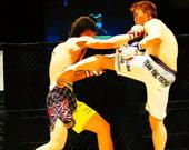 Боевой матч UFC - Пазл