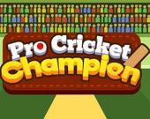 Чемпионат по крикету