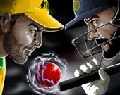 Чемпионат мира по крикету